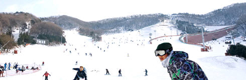 Yangji  Ski resort
